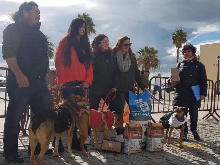Balance de San Antón en Puerto Real