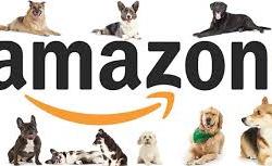 Nuestra lista de deseos en Amazon para esta época que estamos viviendo